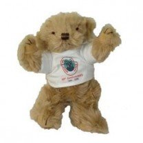 personalised school bearspersonalised school bears