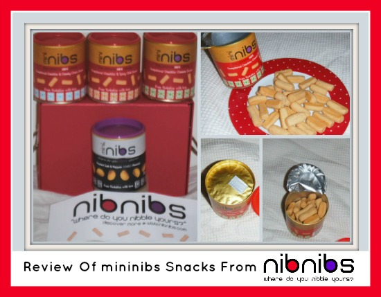 review of mininibs cheese straws from nibnins
