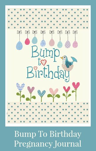 review of bump to birthday pregnancy journal