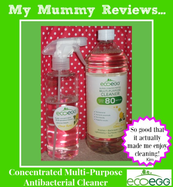 Ecoegg Concentrated Multi-Purpose Antibacterial Cleaner