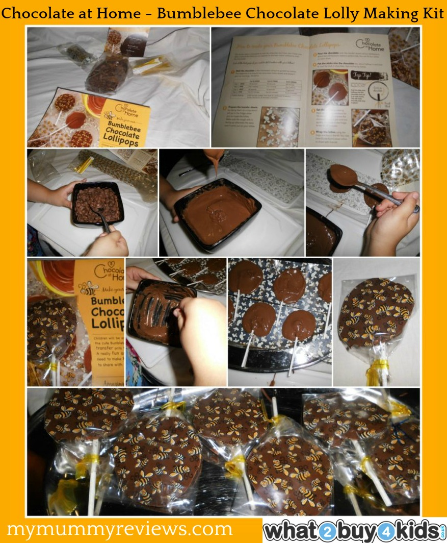 Review Of Chocolate At Home Bumblebee Chocolate Lolly